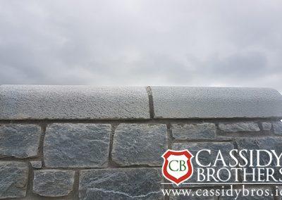 Irish Blue Quartz Coping - Bush Hammer Finish